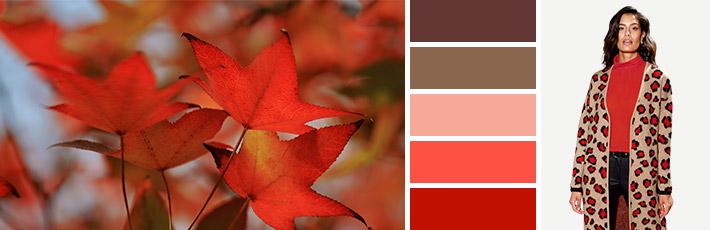 Herbstyp Musterwelt